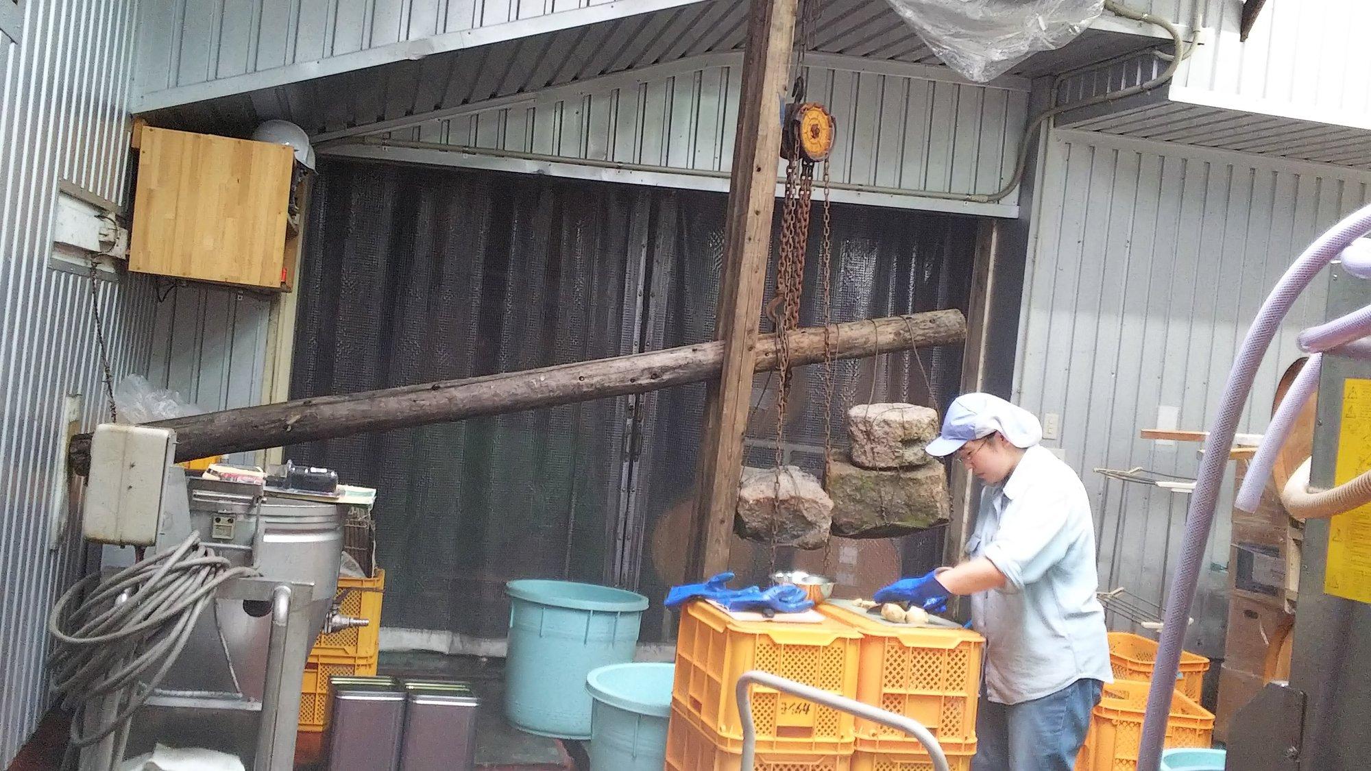 カタシモワイナリー加工中の従業員さん
